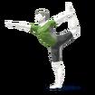 JSSB Wii Fit Trainer alt 3