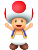 Toad (MP10) 3