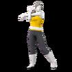 JSSB Wii Fit Trainer alt 2