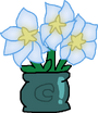PrizedPossession Moonflowers