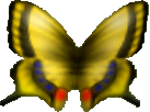 Butterfly (Ocarina of Time)