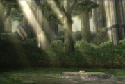 The Lost Woods2