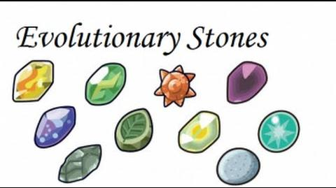 Pokemon Theory How Do Evolution Stones Work?