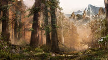 FCP Artwork Temperate Forest 233252