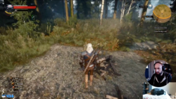 Witcher3Action