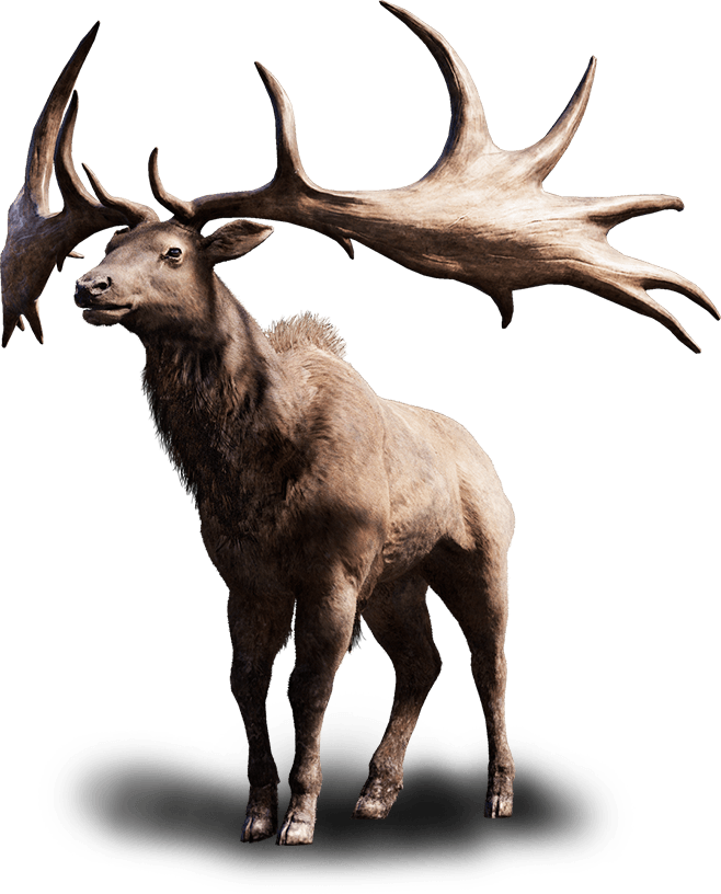 Tall Elk | Far Cry Wiki | FANDOM powered by Wikia