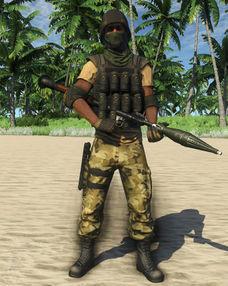 Privateer RPG Shooter