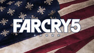 Flag Far cry 5