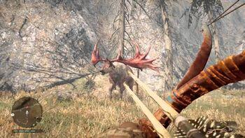 Far cry primal rare red elk