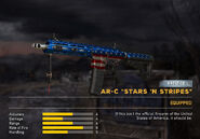 Fc5 weapon arcstarsstripes