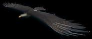 FC3 cutout blackeagle