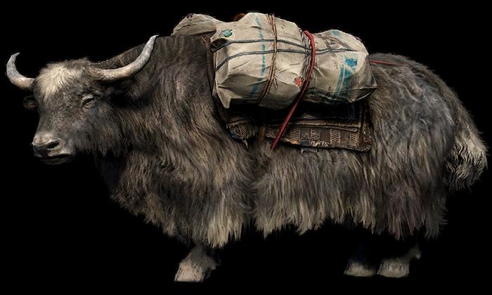 Yak Far Cry Wiki Fandom
