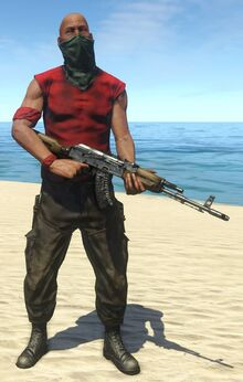 Assaulter 2