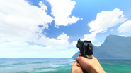 FC3 D50 First-Person View