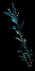 FC3 cutout stout kelp