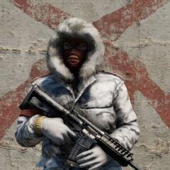 Зимний гвардеец (все враги из разных подразделений в заснеженных уровнях имеют схожую модель)