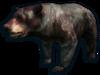 FC3 cutout undyingbear