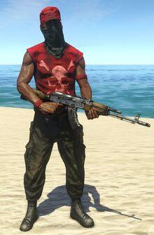 Assaulter 5