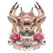 FC3 Buck (1)