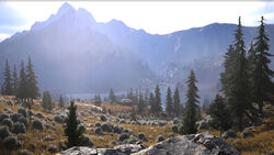 Fc mountain ncsa web 307423