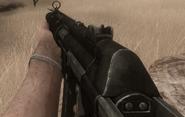 FC2 MP5