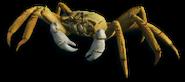 FC3 cutout crab