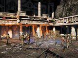 Arena Shanath