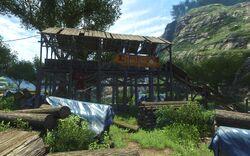 FC3 Лагерь лесорубов 10