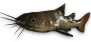 FC3 cutout riverfish