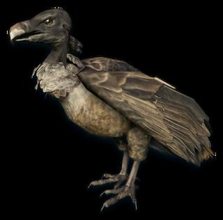 FC3 cutout vulture