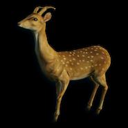 FC3 cutout spottedsika