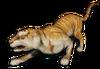 FC3 cutout goldtiger