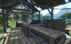 FC3 Лагерь лесорубов 12