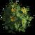 FC3 cutout yellowsage