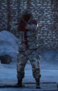 Royal guard Snow Lieutenant