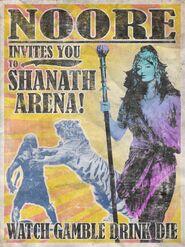 FC4 Арена Шанат плакат