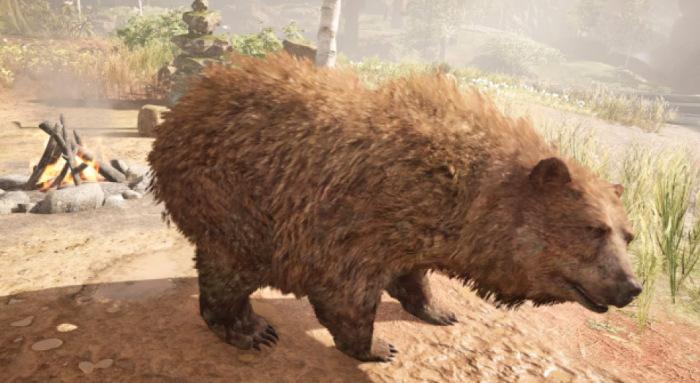 Bear Far Cry Wiki Fandom