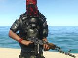 Pirate Defender