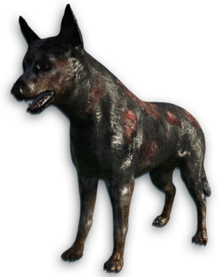 FC3 cutout rabiddog