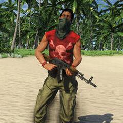 Pirate Assaulter