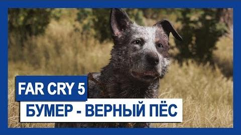 FAR CRY 5 БУМЕР – ВЕРНЫЙ ПЕС