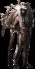 Fcp character-tensay ncsa