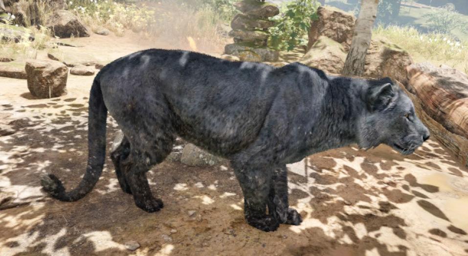 Felidae Far Cry Wiki Fandom