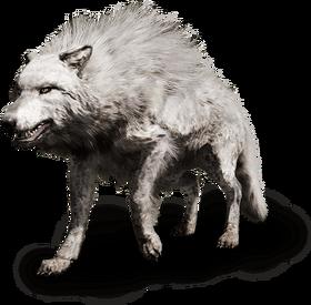 Far cry primal wolf
