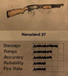 FC2 MP Homeland 37