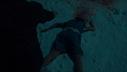 Denise's death