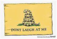 Gadsden Flag dont laugh at me thread 8985624