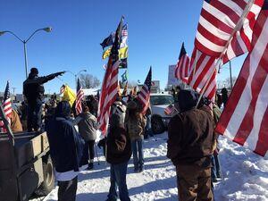 17 armedprotestors