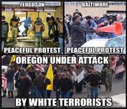 Ferguson - Baltimore - peaceful protests Oregon Under Attack thread 8985624