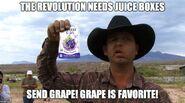 067 revolution needs juice boxes